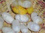 Cocon ver à soie
